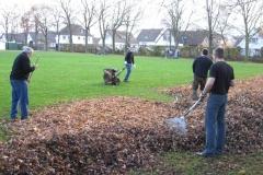 2009-11-21-Laubaktion004