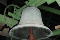 DSCI3354